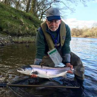 Catching Your Second River Tay Spring Salmon