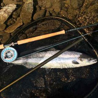Fishing The Tay For Spring Salmon With Jock Monteith