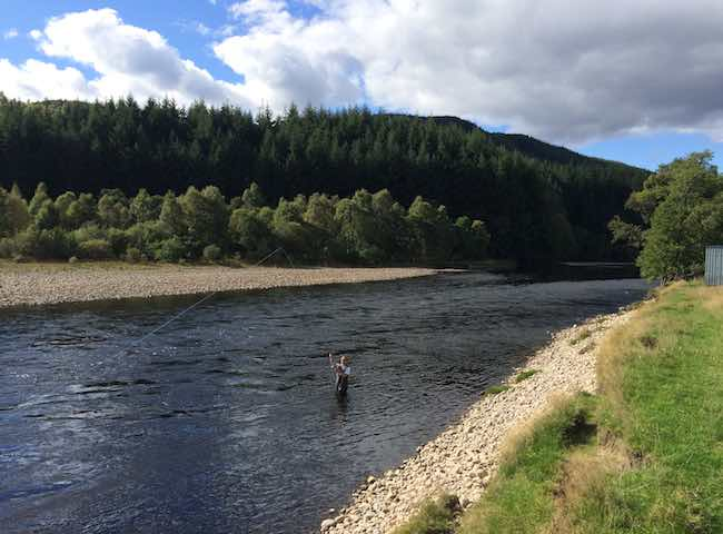 Speycasting tips