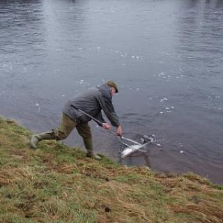 Salmon Fishing Scotland (197).JPG