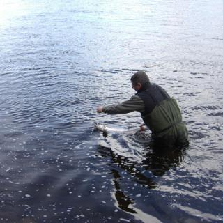 Salmon-Fishing-Scotland-(210).jpg